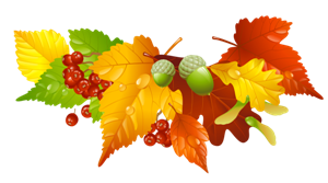 https://kultura.tomice.pl/wp-content/uploads/2017/09/banerek-jesienny-li%C5%9B%C4%87.png